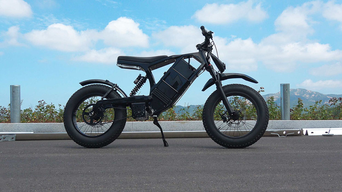 Denzel Rush Electric Dirtbike Project Junior And Carbon